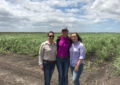 Pictured in a sugar cane field are OSWCD staff. From left to right, Audrey Kuipers, Justina Mattson, and Courtney Murphy.