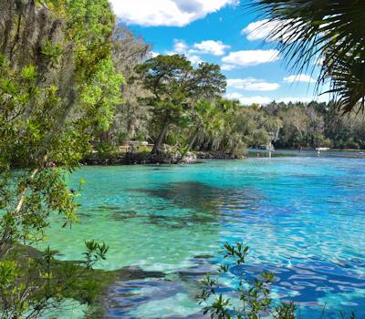 Lake - Ocala FL